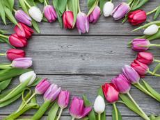 Значението на цветята, подарявани за Свети Валентин