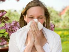С какво сами утежняваме алергиите си?