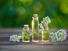 Етерично масло от валериан – при стрес и раздразнен стомах