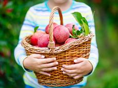 4 храни, които правят децата по-умни
