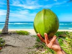 Сейшелските острови – кокосовият рай