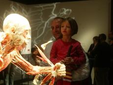 Скандална изложба за човешкото тяло пристига в България