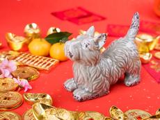 Талисмани за късмет в годината на Жълтото земно куче