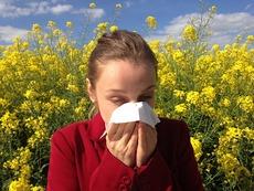 3 неверни мита за алергиите