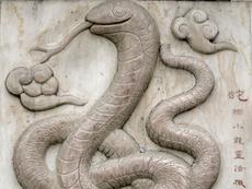 Китайският хороскоп: зодия Змия