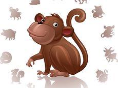 Лош късмет ли вещае годината на Маймуната за маймуните?