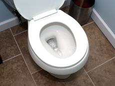 Не изхвърляйте това в тоалетната!