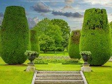 Градинските стълби – прелестна декорация за градината