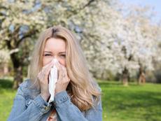 Стратегии за овладяване на пролетните алергии
