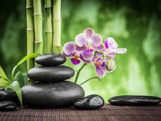 Фъншуй съвети за здраве и благополучие