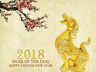 Годишен хороскоп за годината на Жълтото земно куче