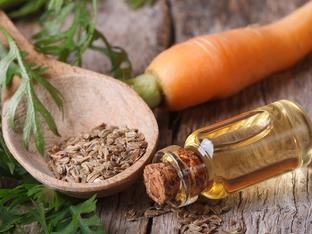 Масло от семена на морков и неговите ползи