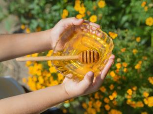 Защо бебетата не могат да ядат мед?