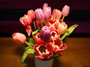 Какво се слага на трапезата на Цветница?
