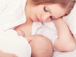 Елена Василева: Задачата на коластрата е да защитава бебето