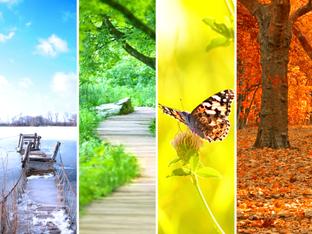 Тест: Сезонът, в който сме родени, определя личността ни