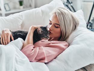 Защо любителките на котки стават най-добрите съпруги?