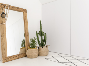 Декорация с кактуси