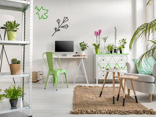 Как да премахнете негативната енергия от дома?