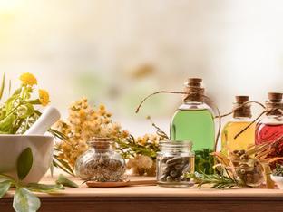 8 полезни есенни билки, които можете да отглеждате вкъщи