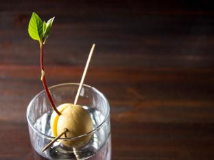 Как да си отгледаме авокадо вкъщи?