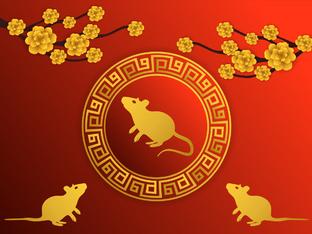 Годишен хороскоп за всички знаци за годината на Белия Метален Плъх