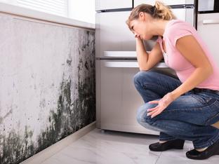 Симптоми на заболявания, причинени от токсичен мухъл вкъщи