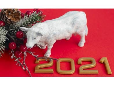 Кратка астрологична прогноза за 2021 -  Годината на белия метален Вол