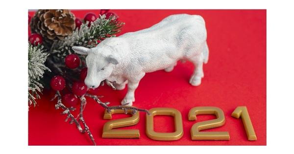Предстои китайската година на белияметален Вол. Настоящата 2020 е под