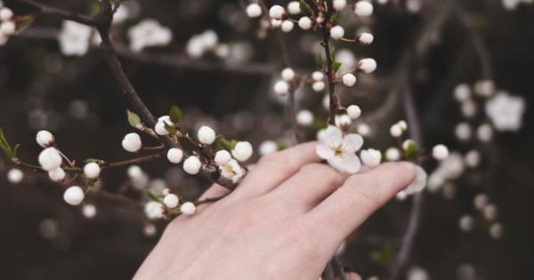 Снимка: Мисъл на деня за... пролетта