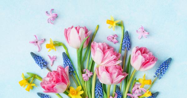 След броени дни навлизаме в най-женския месец – март. Вижте