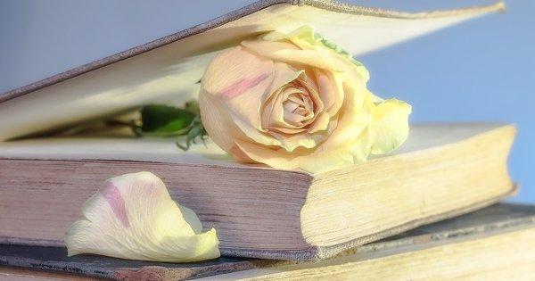 """""""Трябва да умееш да затваряш скучната книга, да излезеш от"""
