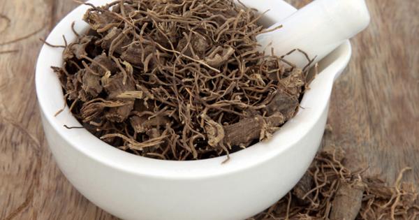 Черният кохош е цъфтящо растение, намиращо се предимно в Северна