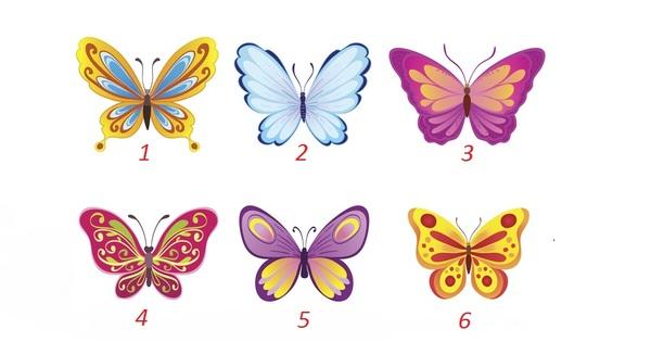 Пеперудите са символ на свободата, красотата, прераждането. Споделяме с вас