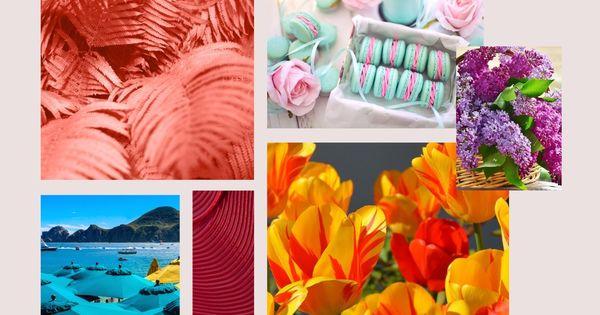 Любимите ни цветове, тези, които са край нас под някаква