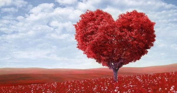 Снимка: Мисъл на деня за... стойностните партньори в любовта