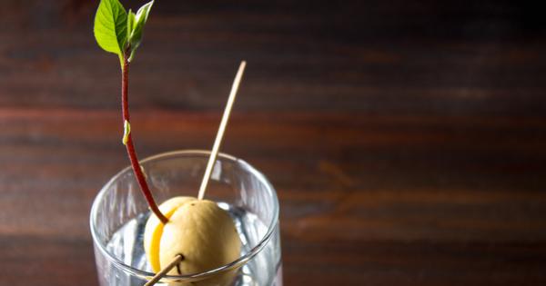 Авокадото е вкусно и полезно, но сравнително скъпо. Не всяко