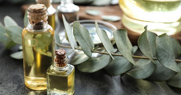 Етеричното масло от евкалипт има много ползи за здравето и