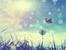 Вдъхновение на седмицата: 5 правила за живот от Петър Дънов