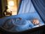 Една възможна причина бебето да се буди нощем