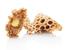 Пчелното млечице – здраве и дълголетие