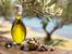 10 алтернативни употреби на зехтина
