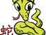 Характеристики на Змията според китайския хороскоп