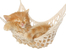 Знаете ли, че... котките издават около 100 различни звука?