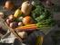 10 есенни храни за здраве и имунитет