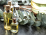 Страхотни полезни свойства на маслото от евкалипт