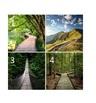 Изберете си пътека и вижте какво ви очаква до края на годината