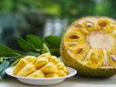 Топ 10 плодове, богати на протеини