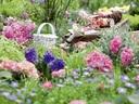 Красива лятна градина